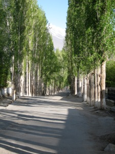 A beautiful poplar lined entry to Ishkashim. To the traveler, this means your journey is just about over.