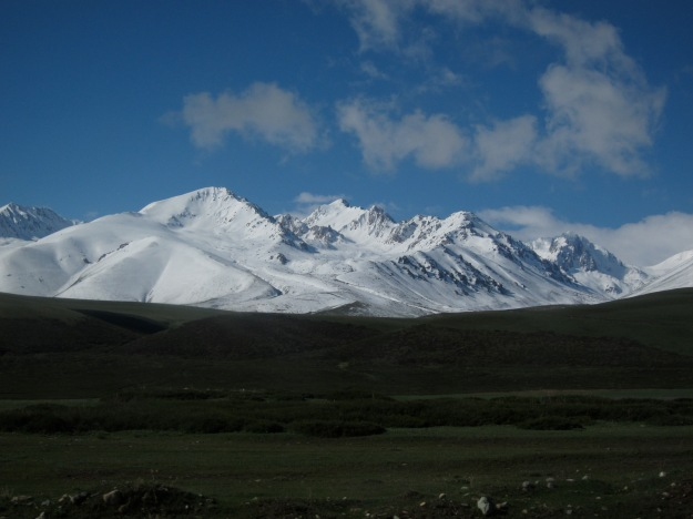Now that's just gorgeous! In the alpine plateau between Toktogul and Bishkek.